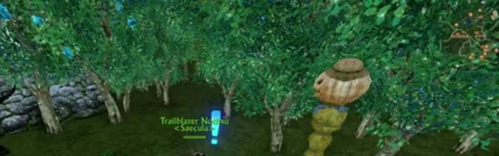 Detail Guide to Planting Rare ArcheAge Archeum Trees