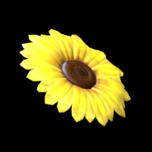 Flower - Sunflower